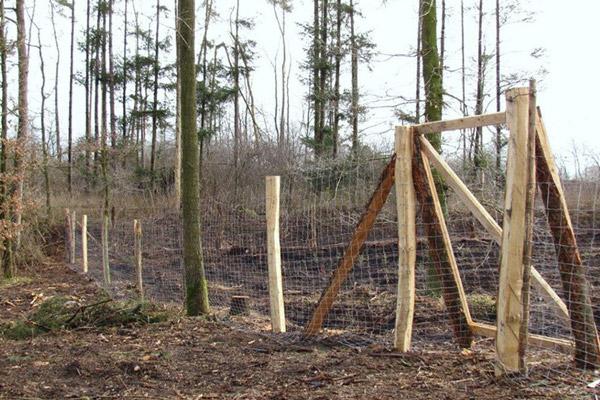 Forstdienstleistungen - Zaunbau mit Eichenpfählen